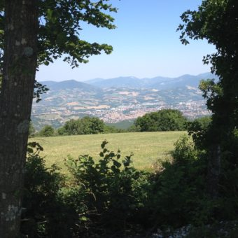 Panorama Ambiente